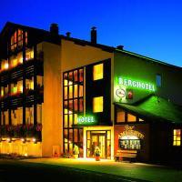 Hotel Pictures: Berghotel Wolfshagen garni, Langelsheim