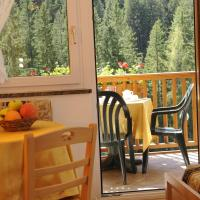 Studio (4 Adults) with Mountain View