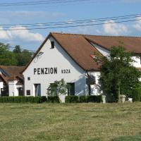 Hotel Pictures: Penzion Koza, Staňkov