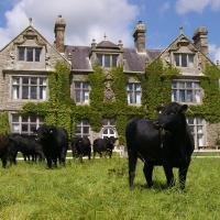 Hotel Pictures: Blessingbourne Cottages & Apartments, Fivemiletown