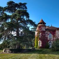 Hotel Pictures: Château Marteret, Vic-Fezensac