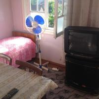 Hotel Pictures: Aylin Guest House, Sheki