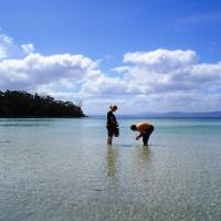 Hotel Pictures: Bruny Island Escapes and Hotel Bruny, Alonnah