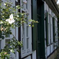 Hotel Pictures: B&B Rosindell, Halle Westfalen