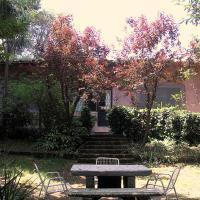 Altare del Lupo
