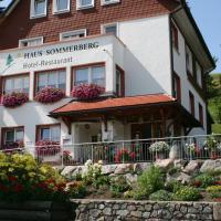 Hotel Pictures: Haus Sommerberg, Feldberg