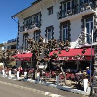 Hotel Pictures: Hotel Bellevue, Chambon-sur-Lac