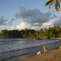 Playa Bonita Residency