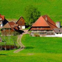 Hotel Pictures: Ferienwohnung Im Schwarzwald, Tennenbronn