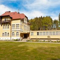 Hotel Pictures: Hotel Zamecek Kaplice, Kaplice