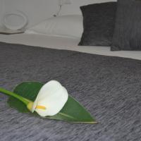 Apartment - Dragonera