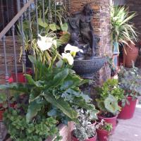 Hotel Pictures: Apartamentos Siete Lagunas, Trevélez