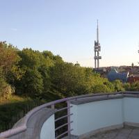 Superior Studio with Terrace and Park View (3 Adults)