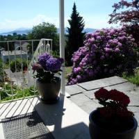 Hotel Pictures: Apartmenthaus Aussicht, Lindau