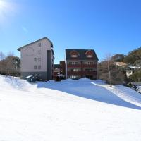 Hotel Pictures: Snow Ski Apartments, Falls Creek