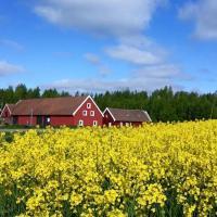 Hotellbilder: Red Bird Farm, Ystad