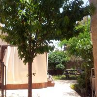 Mango Suite