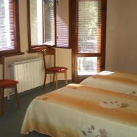 Fotos de l'hotel: Family Hotel Angelov Han, Vidin