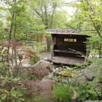 Japanese-Style Standard Room with Mountain View and Shared Bathroom