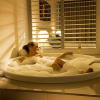 One-Bedroom Spa Suite