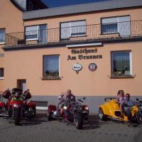 Hotel Pictures: Gasthaus am Brunnen, Illerich