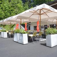 Hotel Pictures: Infopoint - Hotel Silvana, Brunig