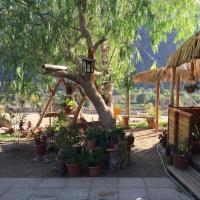 Hotel Pictures: Hostal Al Yaras, Vicuña