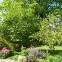 Apple Tree Cottage B&B