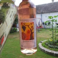 Hotel Pictures: Gästehaus und Weinbau Zur Wiederkehr Strudler, Podersdorf am See