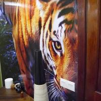 Single Bed in 4-Bed Male Dormitory Room (Tiger Room)