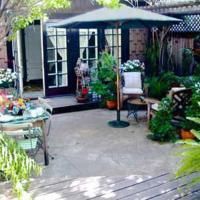 Rousseau's Garden