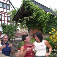Hotel Pictures: Ferienwohnungen Ferienland Cochem, Bruttig-Fankel
