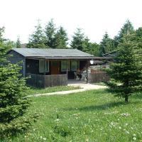 Hotelbilleder: Ferienanlage Reiterhof Pilger, Pansfelde