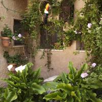 Φωτογραφίες: Casa Rural El Simarro, El Simarro