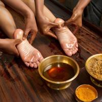 Ayurvedic Package at Executive Double Room in Shared Villa