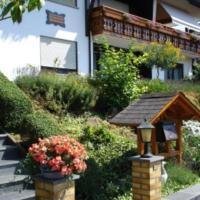 Hotel Pictures: Ferienwohnungen Haus Bartmann, Finkenbach