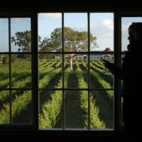 Hotel Pictures: Highbank Country Accommodation, Coonawarra