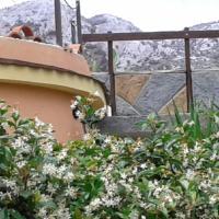 Foto Hotel: Villa Cavalluccio Marino, Avola