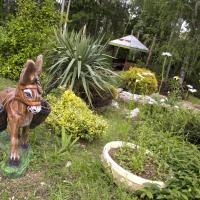Hotel Pictures: Complex Pop Hariton, Dryanovo