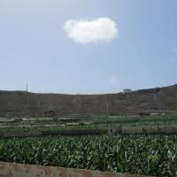 Hotel Pictures: Casa Quintanilla, Arucas
