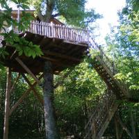 Stairs Treehouse