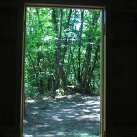 Knotted Pine Yurt