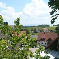 Hotel Pictures: Familienferienhof Berger, Wolpadingen