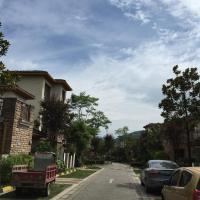 Hotel Pictures: Flower Villa Huashui Bay, Dayi