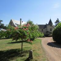 Hotel Pictures: Château de la Roche Martel, Roiffé