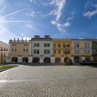 Hotel Pictures: Hotel a hostel U Zlatého kohouta, Kroměříž