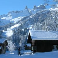 Hotel Pictures: Ferienwohnung Steber, Vandans