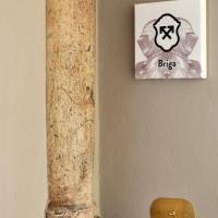 One-Bedroom Apartment - Briga