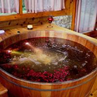 Hotel Pictures: Refúgio do Leão, Monte Verde