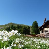 Hotel Pictures: le Chal'heureux, Vars
